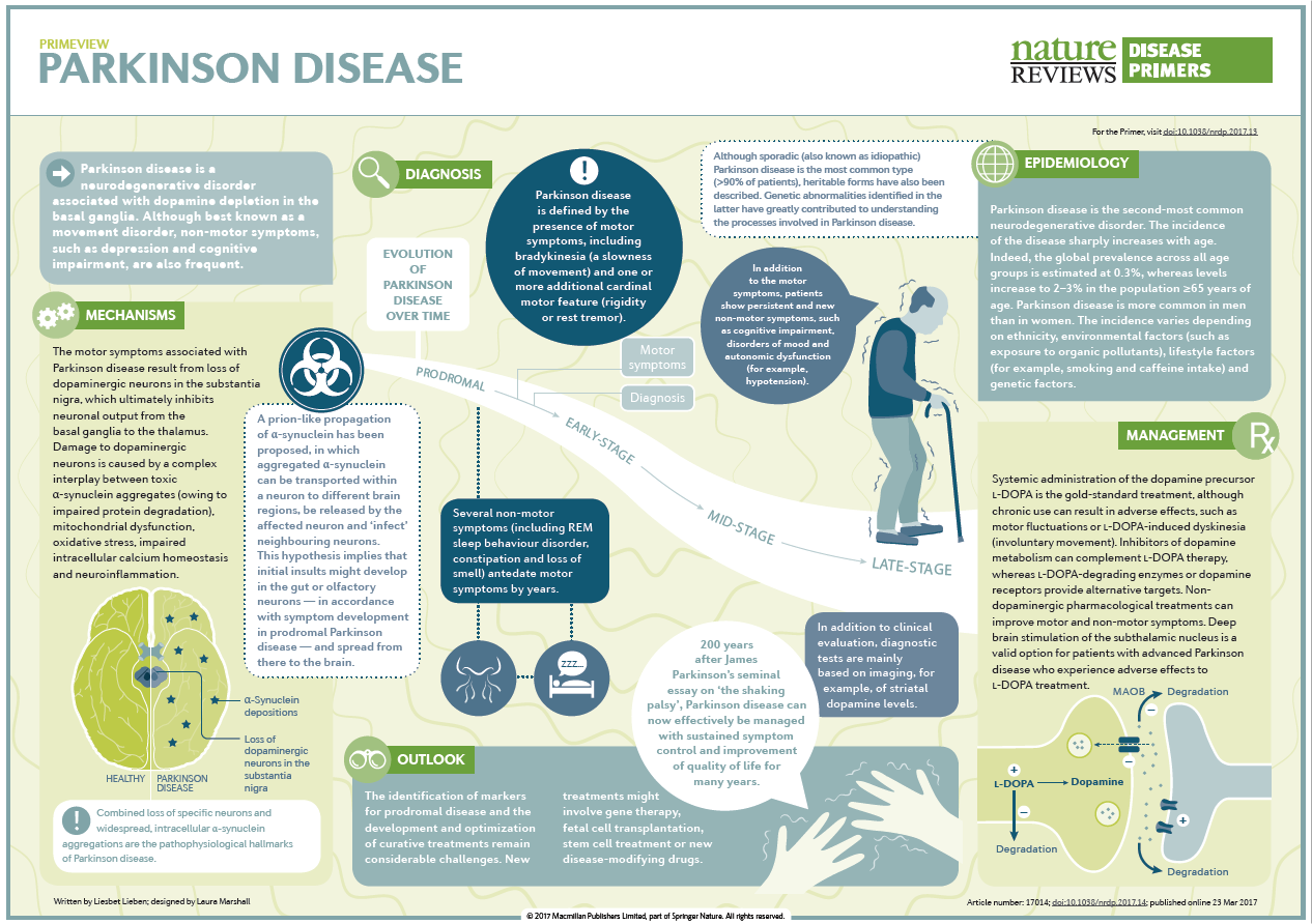 Parkinson disease PrimeView