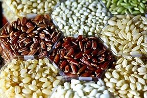 Rice_grains_(IRRI)