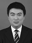Liang Gao © Springer Nature 2020