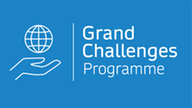 SN Grand Challenges